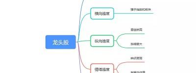 龙起凤落求购股票软件源代码——什么股票叫龙头股?